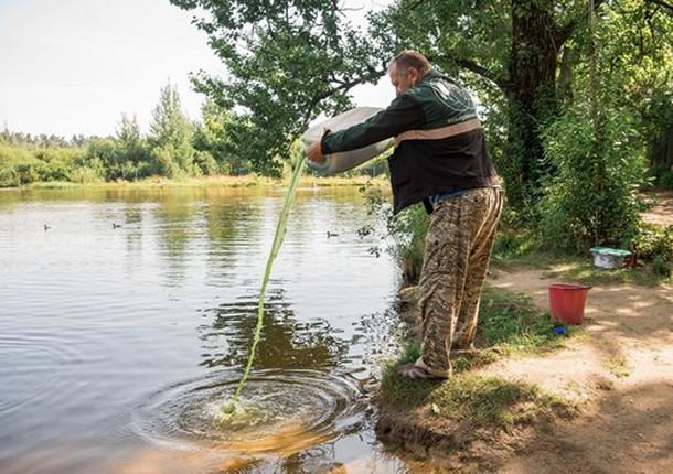 Озеро Аниськино в Балашихе очищено от ядовитых водорослей